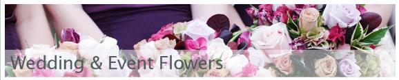 Blossom Flowers, Chorlton